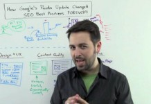 How the Google Panda Update Changed SEO
