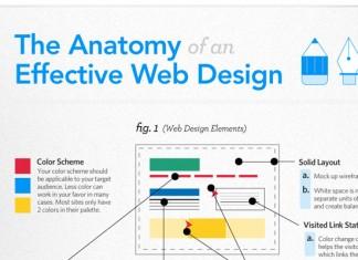 Minimilast-Responsive-Web-Design