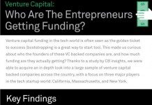 Statistics on Capital for Entrepreneurs: VC and Angel Funding By Race, Age and Gender