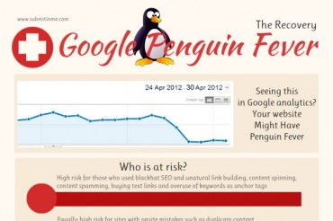 Google Penguin Update Recovery