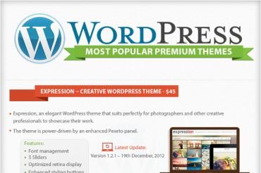 List of the Most Popular Premium WordPress Themes