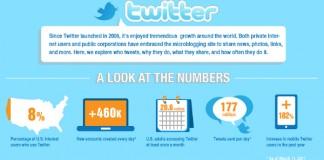 Twitter-User-Audience-Demographics