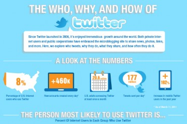 Twitter User Audience Demographics and Statistics