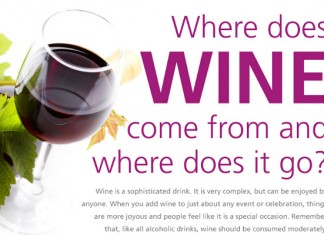 55 Famous Wine Sayings and Funny Quotes