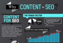 19 Fresh Content SEO Strategy Tips and Statistics