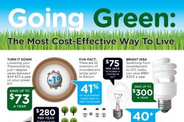 List of 47 Popular Go Green Slogans and Catchy Taglines