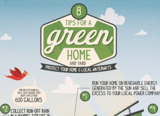 112 Catchy Environmental Awareness Campaign Slogans