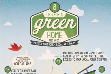 112 Catchy Environmental Awareness Campaign Slogans