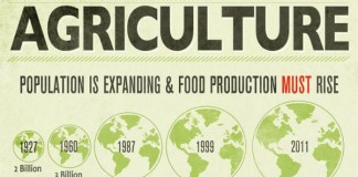32 Catchy Agriculture Slogans and Great Taglines