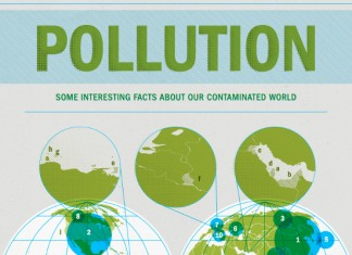 59 Great Air and Water Pollution Campaign Slogans