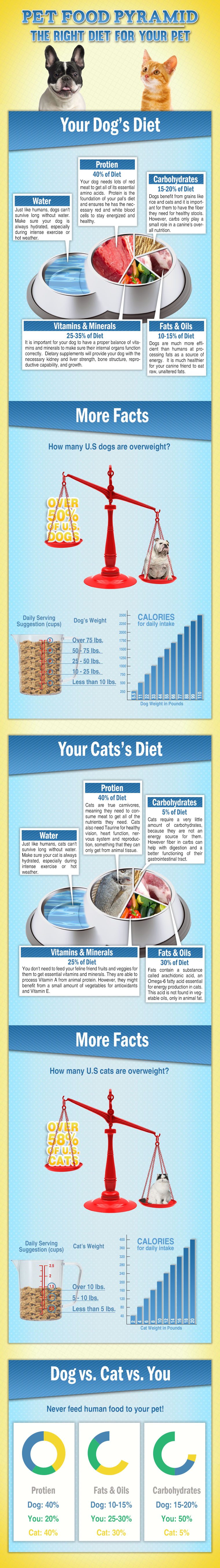 Pet Food Diet Pyramid for Dogs and Cats