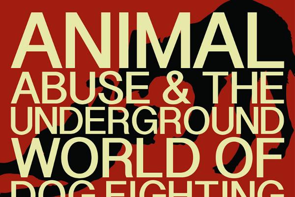 Animal Cruelty Essay