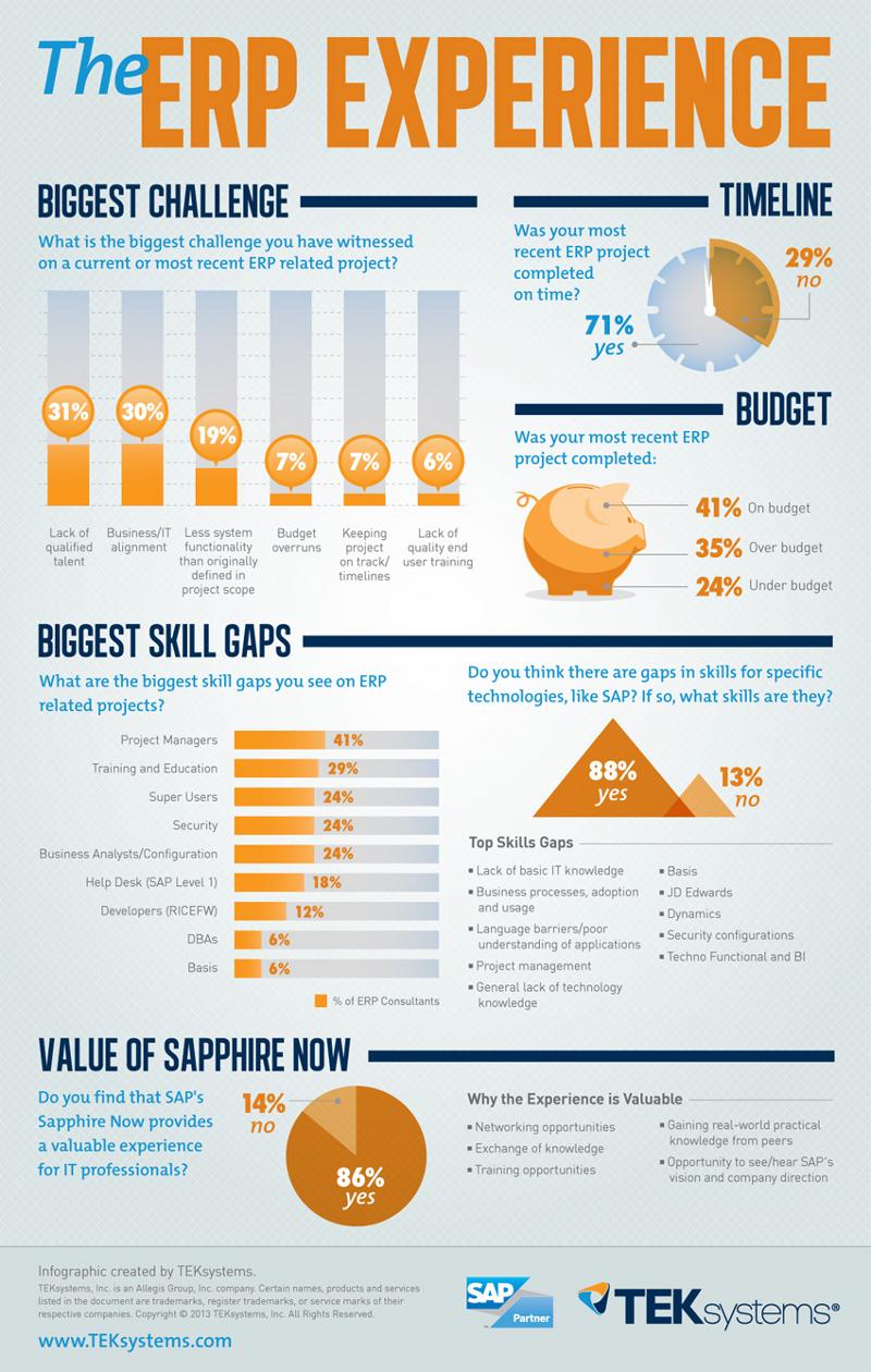 ERP Project Statistics