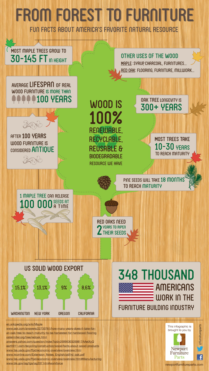 Facts about wood furniture