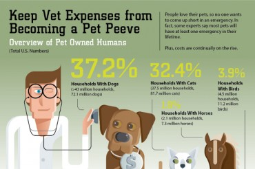 54 Pet Care Industry Statistics and Trends