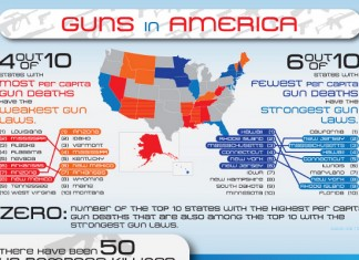 Gun Ownership Statistics by State in America