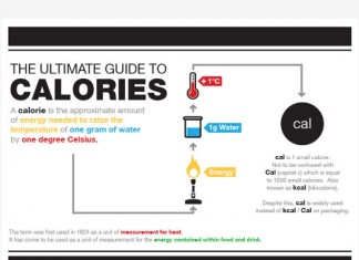 Statistics on What Exercises Burn the Most Calories