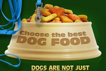 11 Pet Food Industry Statistics and Trends