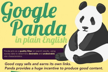 14 Steps to Removing a Google Panda Penalty