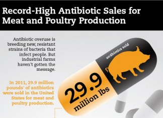 29 Poultry Industry Statistics and Trends