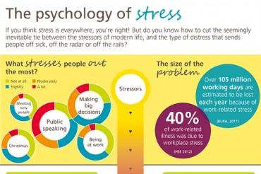 51 Stress Statistics in America