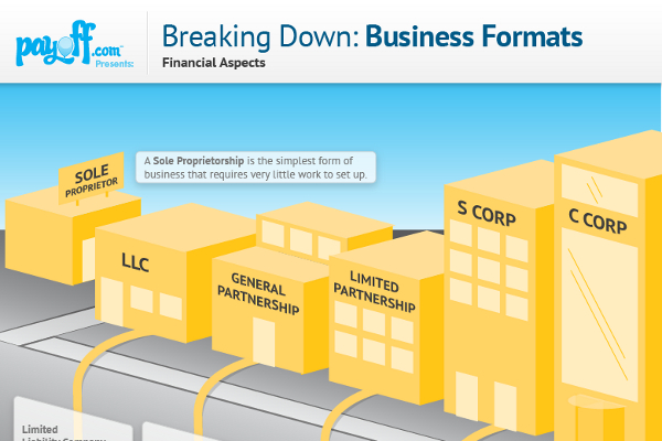 the differences between the formats of financial statements for different types of business Both for-profit and nonprofit businesses use three basic types of financial statements - the balance sheet, profit and loss statement and cash flow statement - to help make decisions that affect operations.