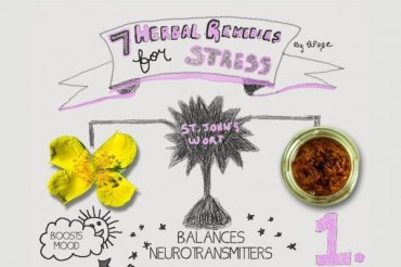 7 Herbal Remedies for Stress and Anxiety