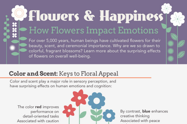 How Flowers Impact Our Emotions