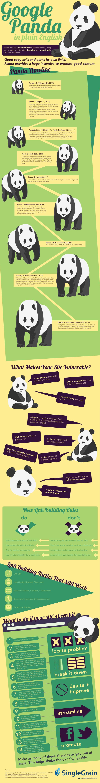 Removing-a-Google-Panda-Penalty