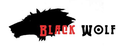 Black Wolf Company Logo