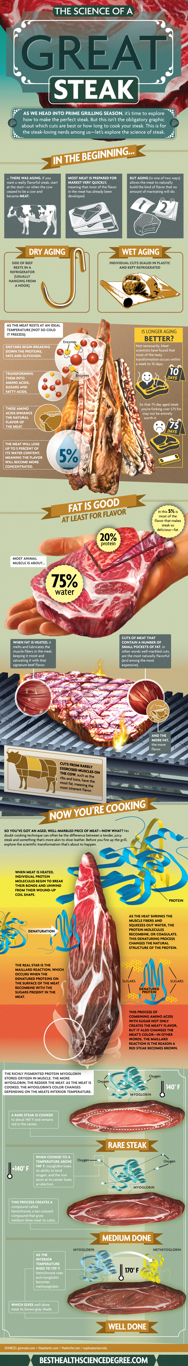 Making a Great Steak The Science Behind Making a Great Steak