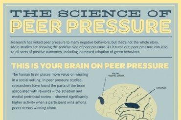 The Science of Succumbing to Peer Pressure
