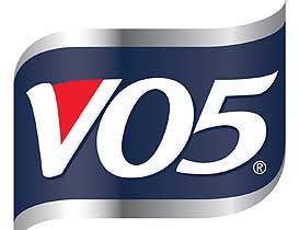 V05 Company Logo