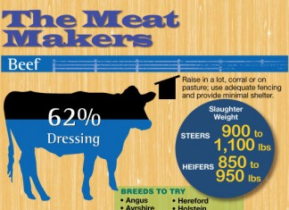38 Ideas for Meat Company Names