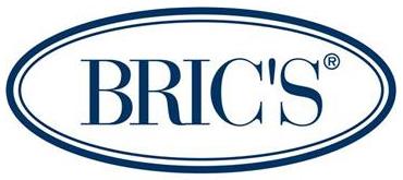Brics Company Logo