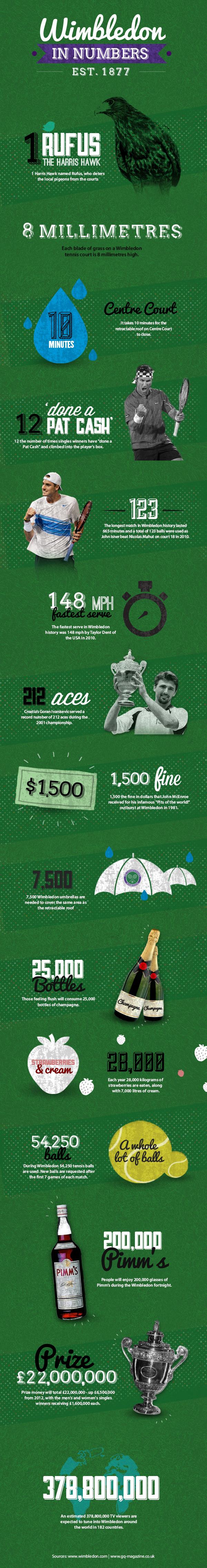 Wimbledon Statistics