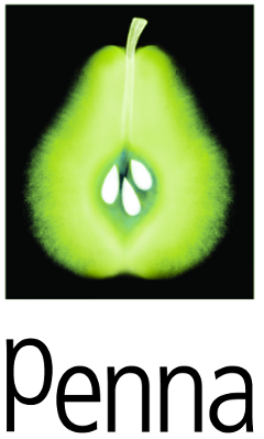 Penna Company Logo