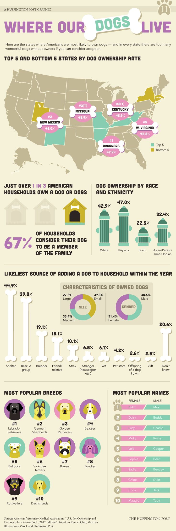 Top Dog Ownership States