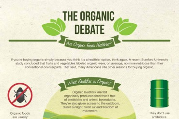 11 Organic Food Industry Statistics and Trends