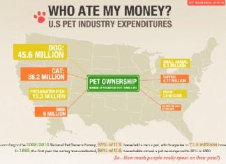 8 Pet Industry Statistics