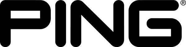 Ping Company Logo