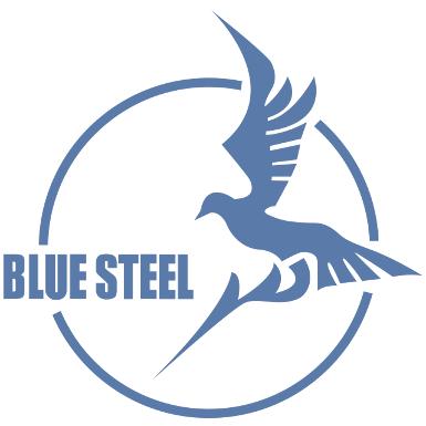 Blue Steel Company Logo