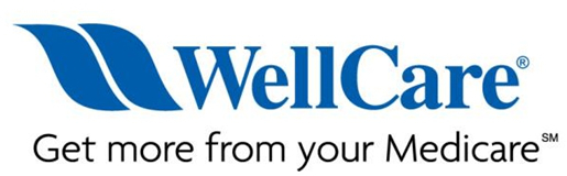 Wellcare Group Company Logo
