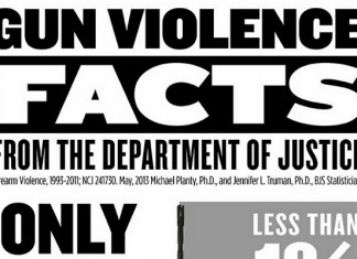 20 Gun Show Loophole Statistics