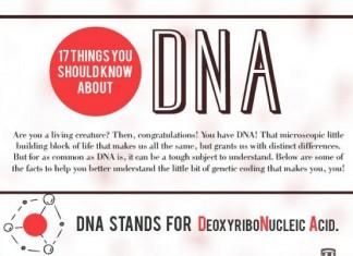 22 DNA Exoneration Statistics