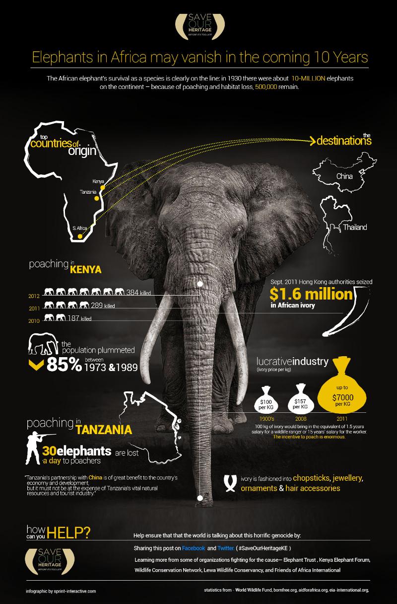 African Elephants Statistics