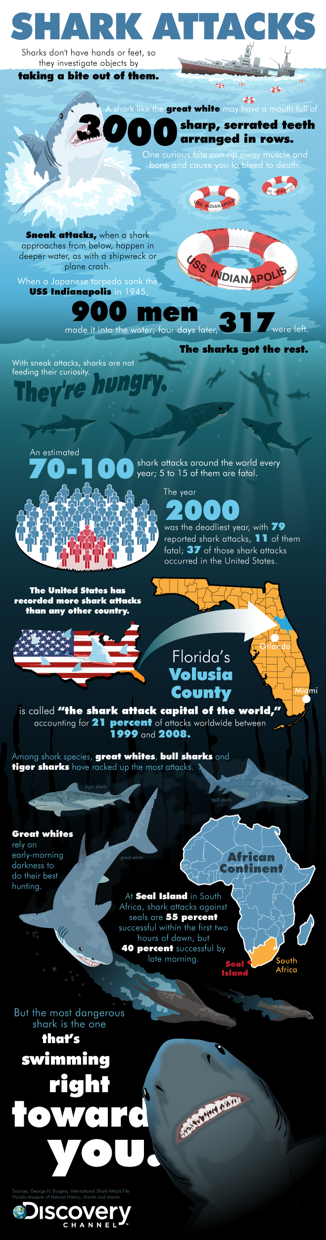 Shark Attack Facts
