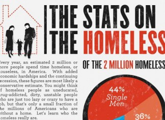 24 Curious Homeless Pet Statistics