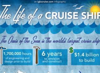 41 Significant Cruise Ship Crime Statistics