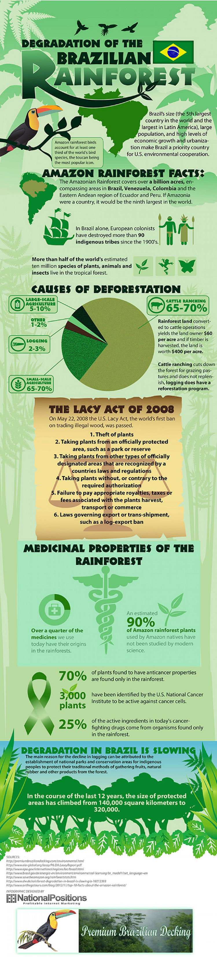 Rainforest Deforestation Facts and Trends